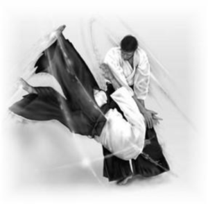Adult Aiki Session @ Hombu | Oxenford | Queensland | Australia