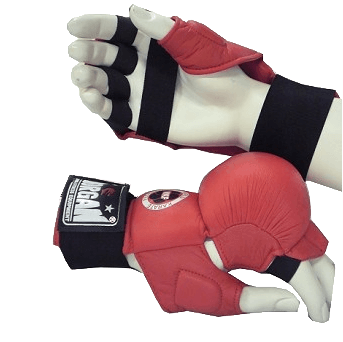 DLX Fist Protector