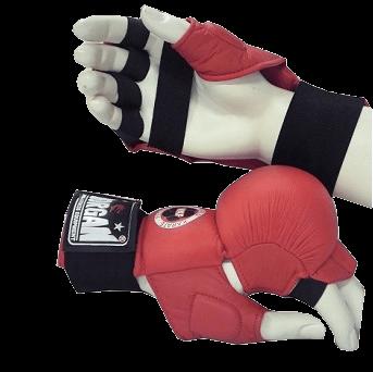 DLX Fist Protector