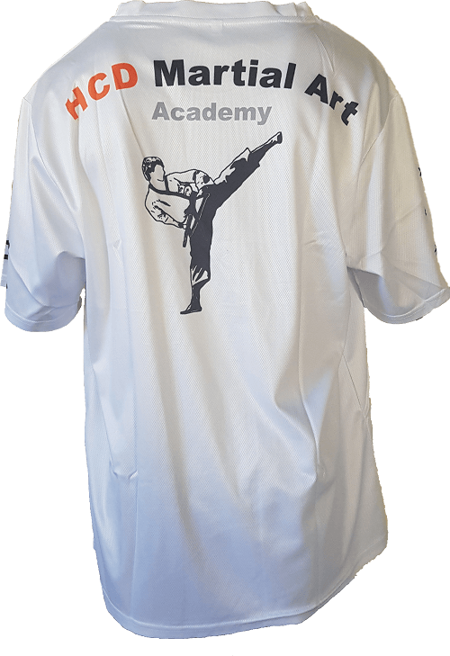 HCD Martial Art Academy - Training Back