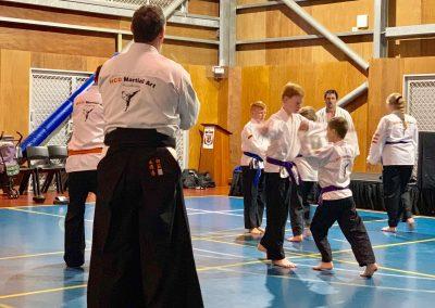 HCD Martial Art Academy Winter Grading 2019 _ 8